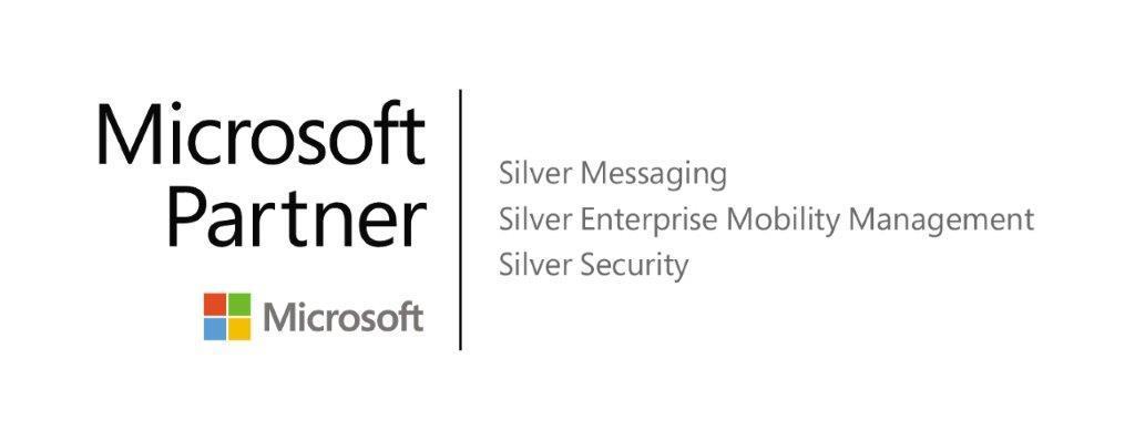 Logo Silver Full